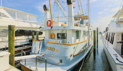 Wanderbird – 2004 Park Isle Marine custom 65′ blue water trawler 3D Model